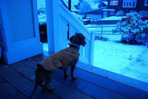 Porch snow 023 [1024x768]