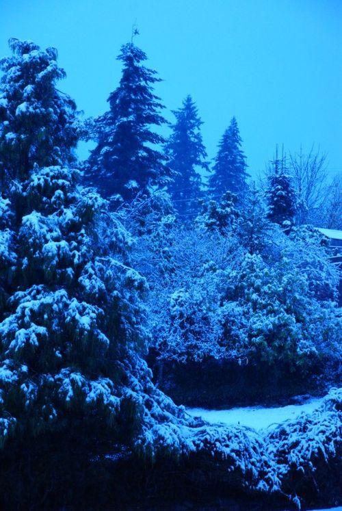 Porch snow 055 [1024x768]