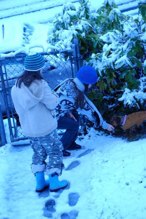 Porch snow 066 [1024x768]