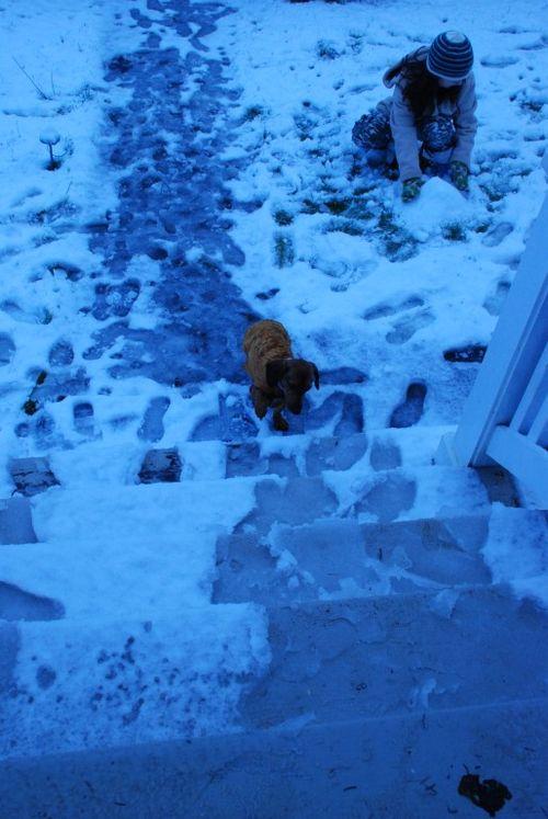 Porch snow 095 [1024x768]