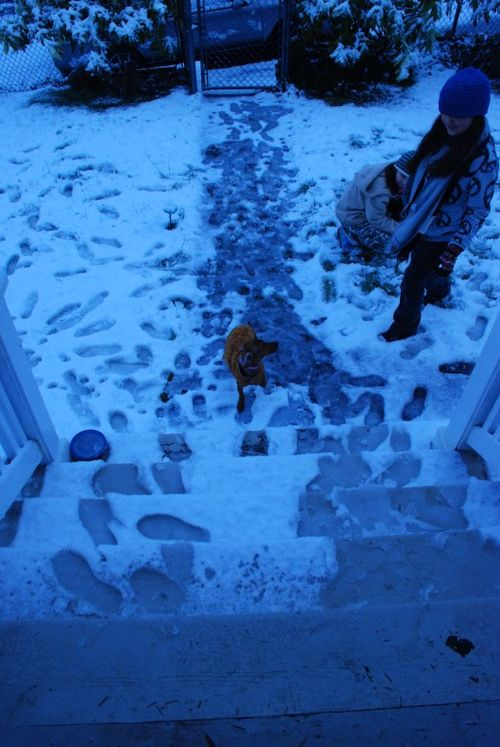 Porch snow 108 [1024x768]