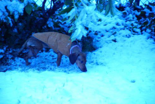 Porch snow 031 [1024x768]