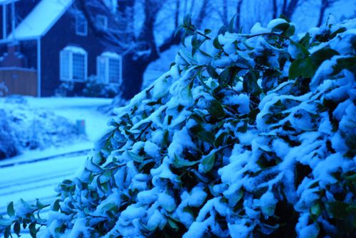 Porch snow 057 [1024x768]