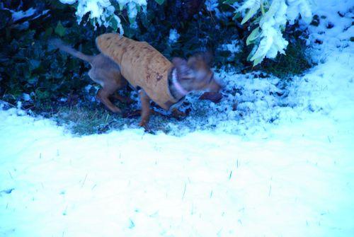 Porch snow 064 [1024x768]