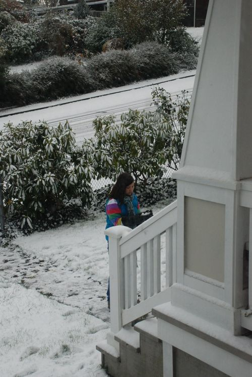 Snow day 054 [1600x1200]